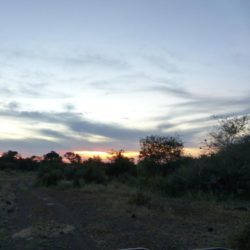 Sunset Makuleke Contractual Park KNP