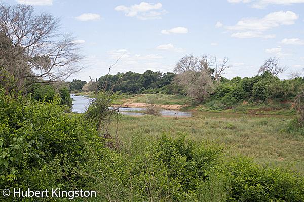 Levubu River - Kruger National Park
